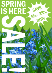 Spring Is Here Sale!